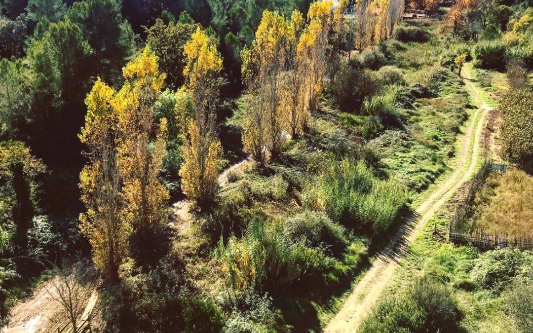Itinerari saludable pel riu Gaià