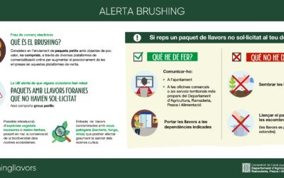 ALERTA BRUSHING – GENERALITAT DE CATALUNYA