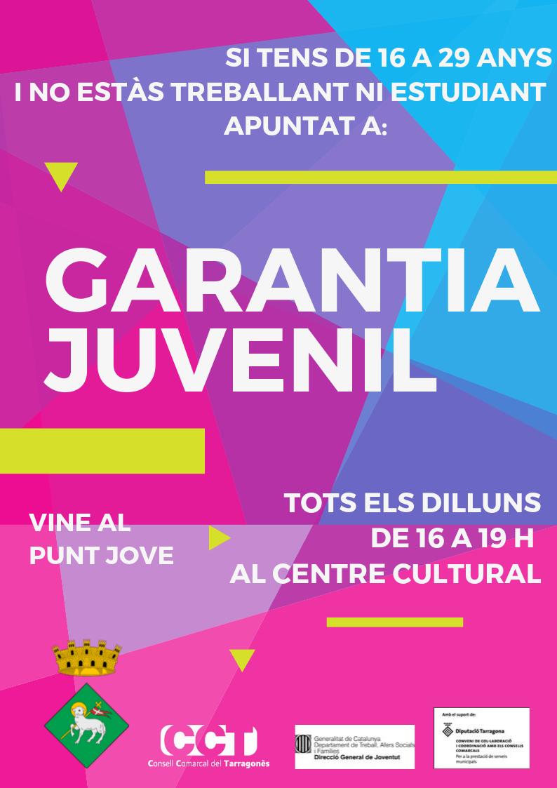 GARANTIA JUVENIL. PUNT JOVE